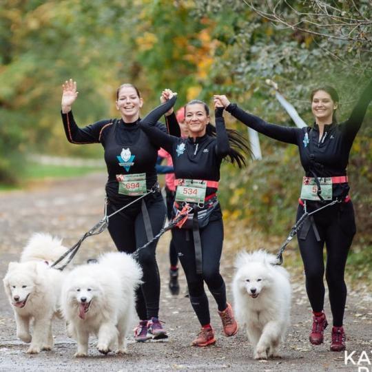 HARD DOG RACE Not Just Run