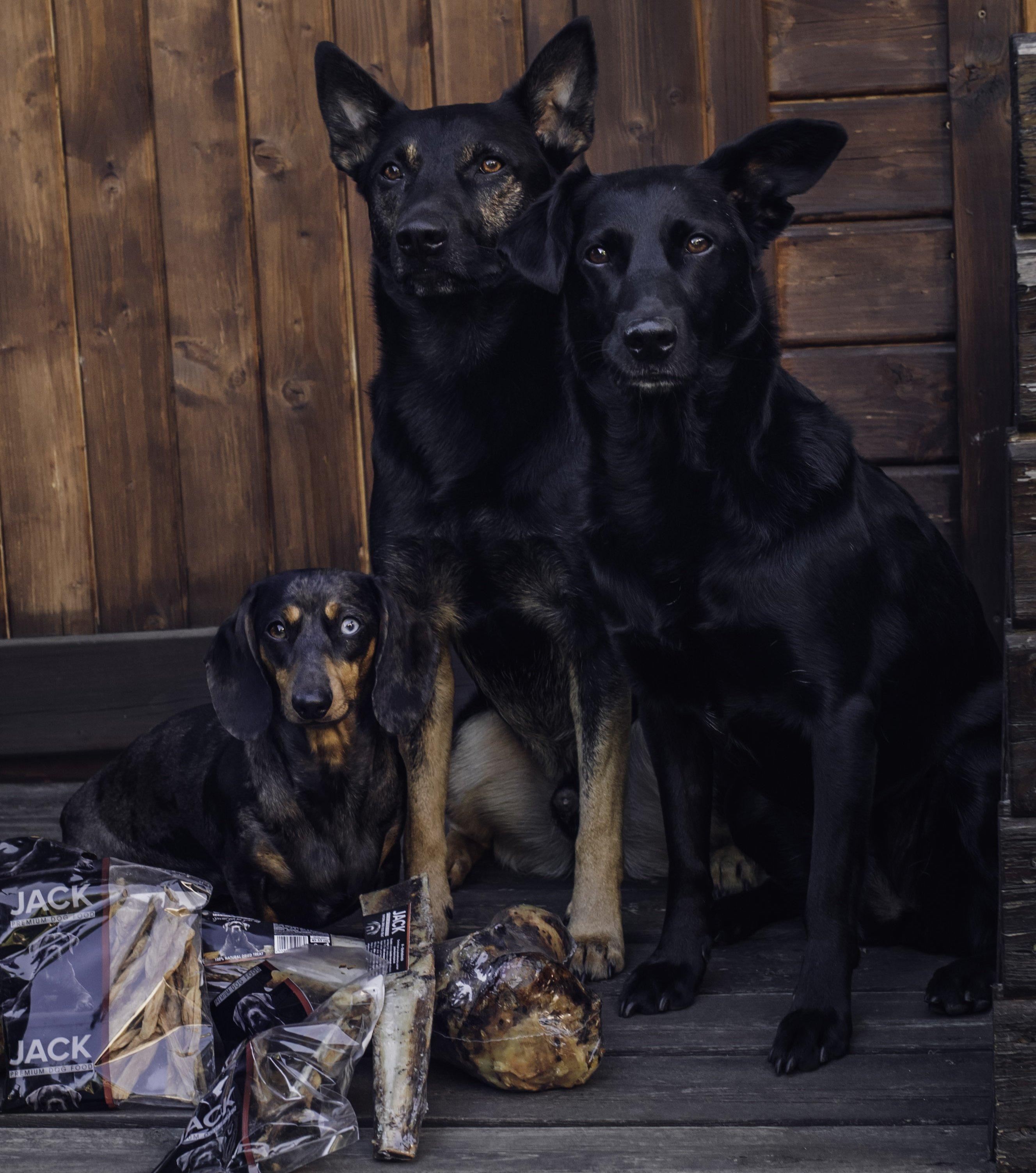 3 fekete kutyaforrás: 2blackdogsview instagram oldala