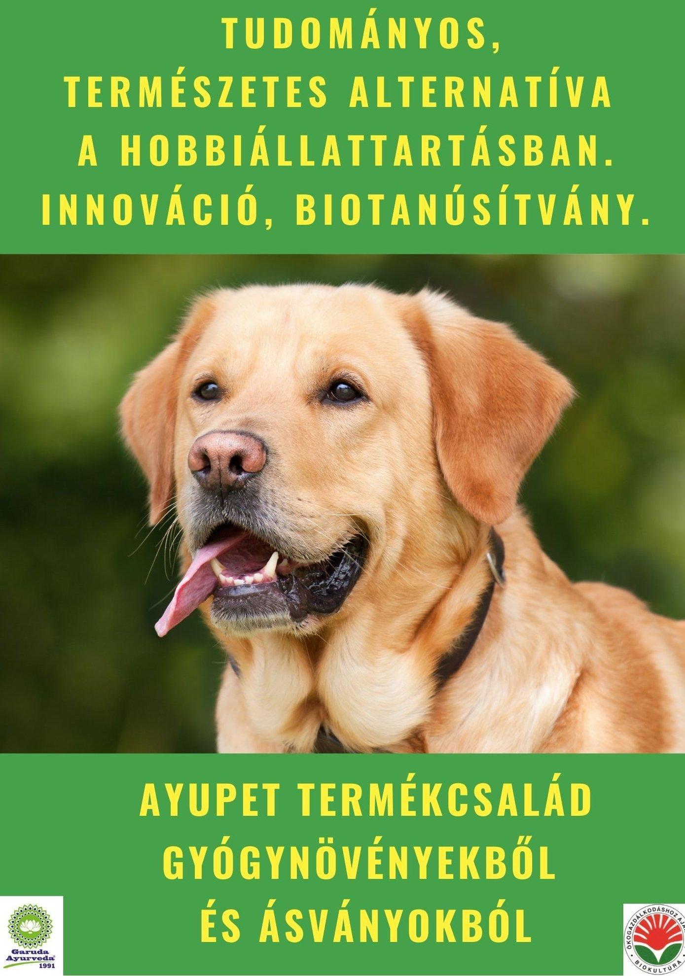 Az Ayupet termékcsalád termékei természetes alapanyagokból készülnek