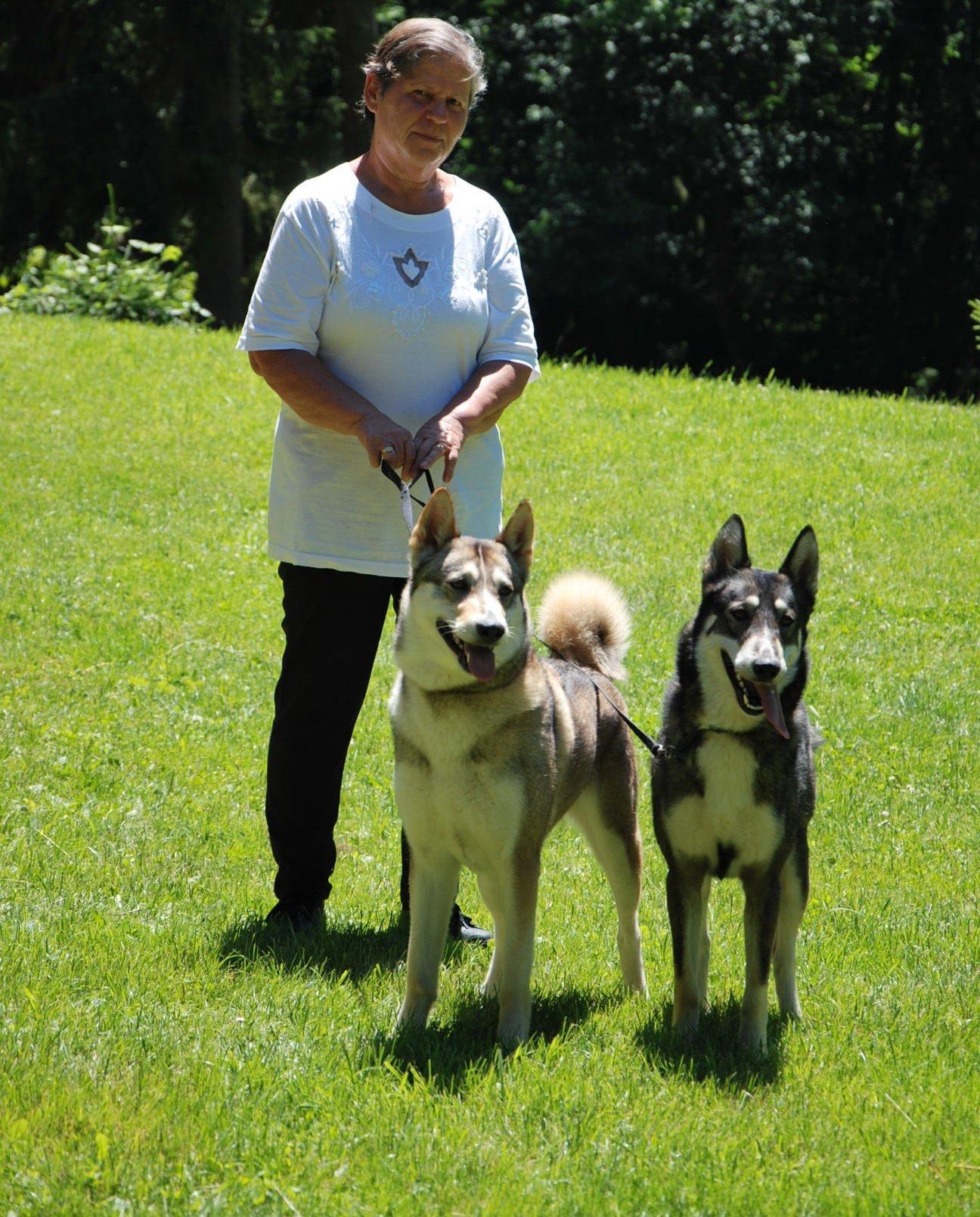 Jancsó Lászlóné tenyésztő kutyáival