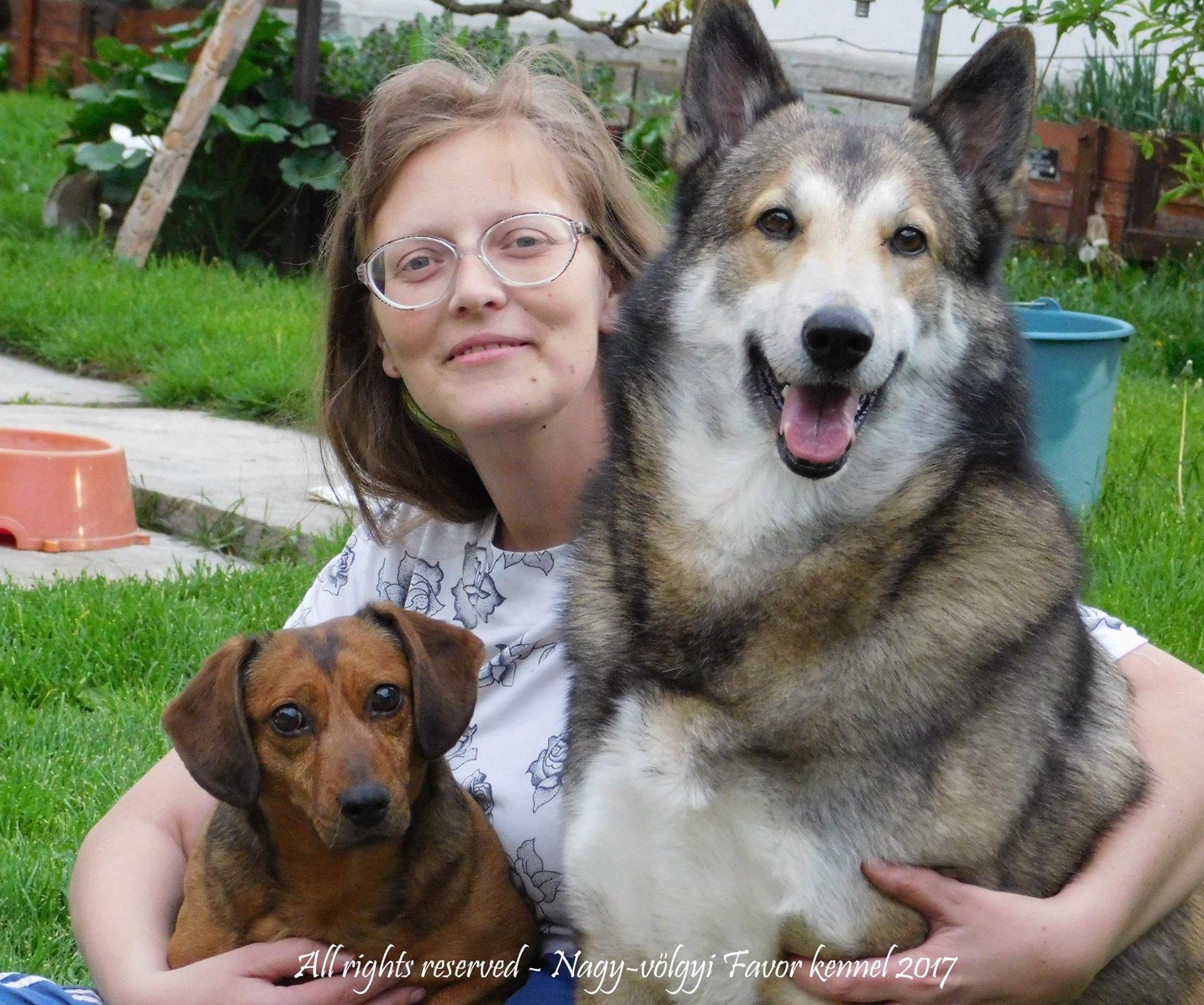 Nagy Margit tenyésztő kutyáival