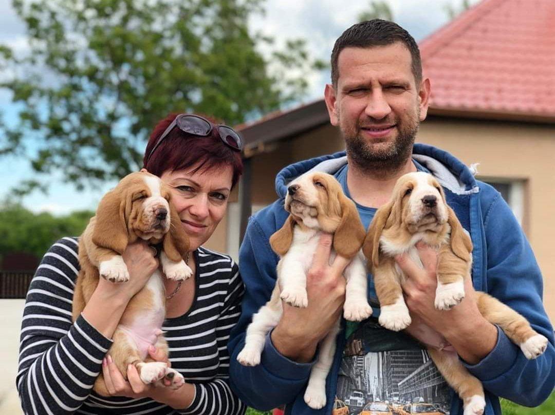 Kutya kölykök gazdáikkal