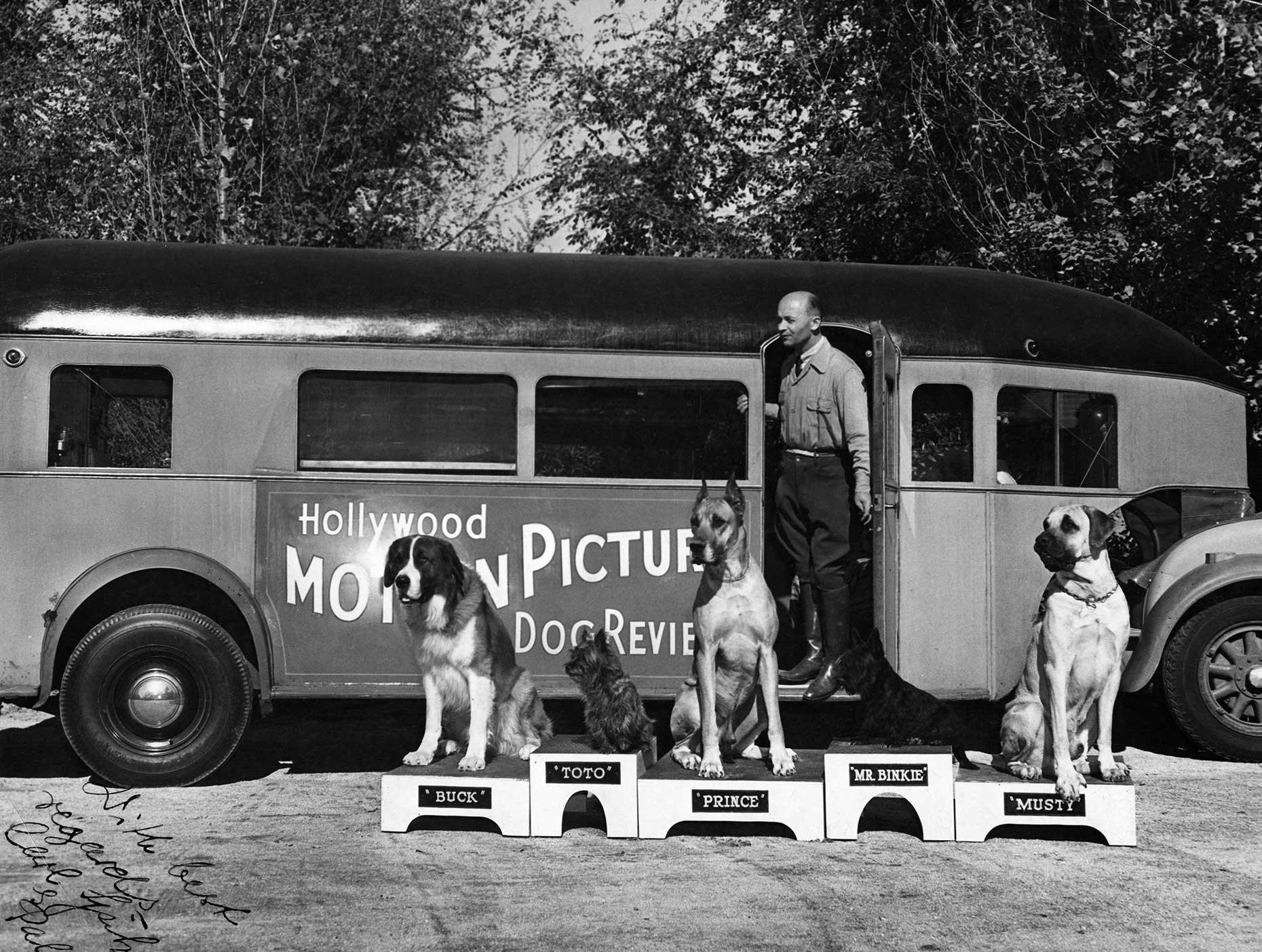 Carl Spitz és az általa kiképzett kutyák, Forrás : oscars.org