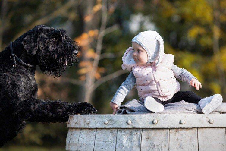 Gyerek a hordón, kutyával