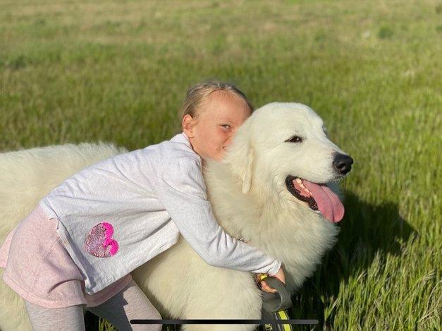 Kislány ölelgeti nagy kutyáját