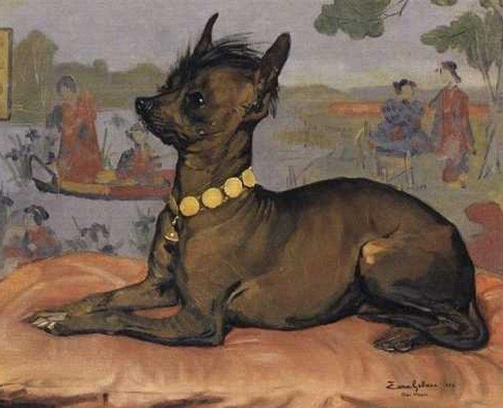 1882-es portré, Kínai meztelen kutyáról, forrás: australiandoglover.com