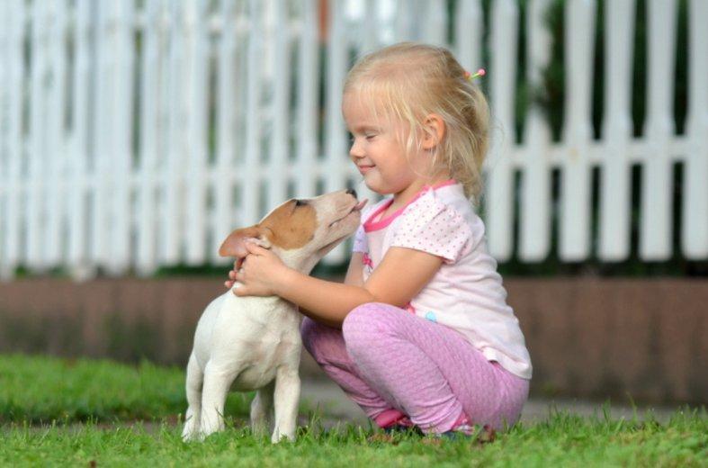 Kölyökkutya ovis kislánnyal