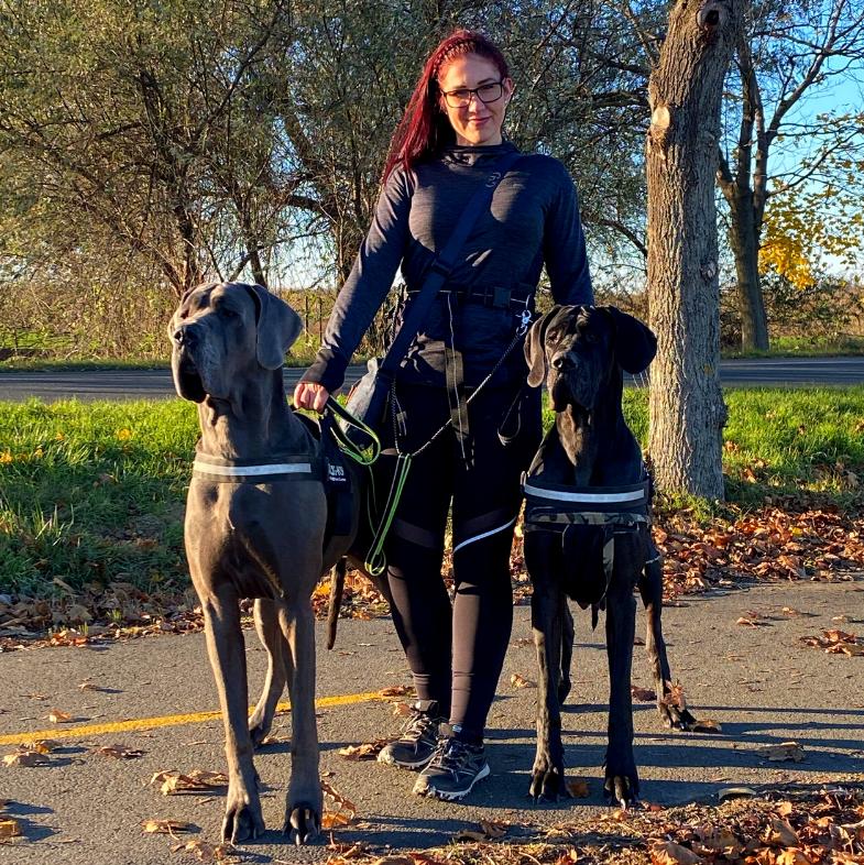 Tenyésző kutyáival