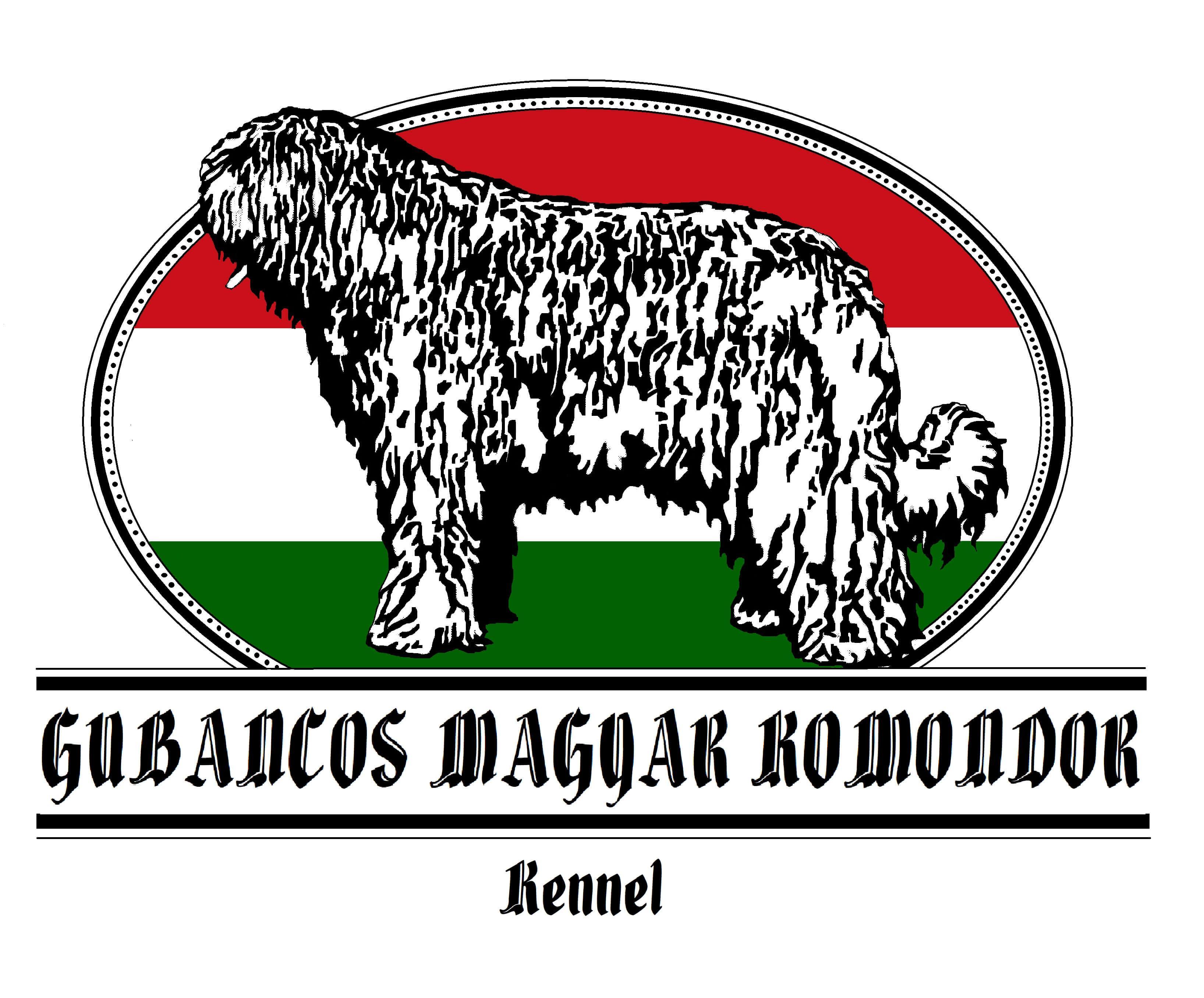 Gubancos Magyar Komondor kennel
